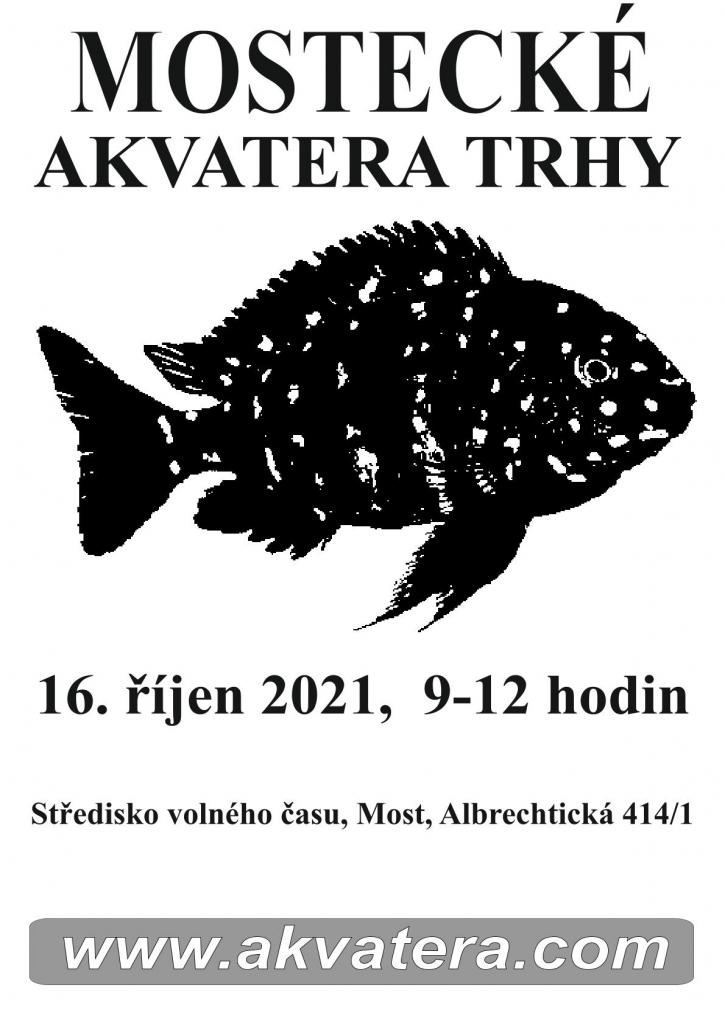 Akvarijní trhy